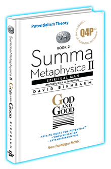 David Birnbaum Summa Metaphysica Flip books God and Good